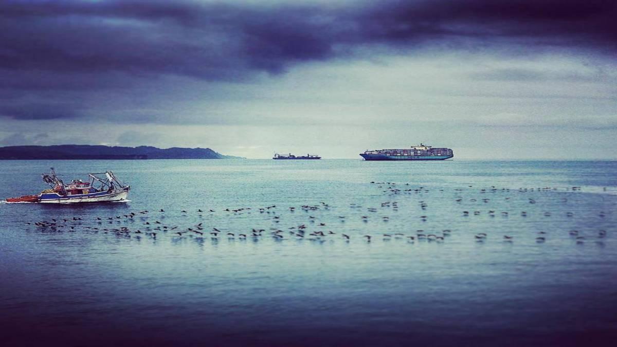 imagem do mar com navio de contairners trazendo carga de empresas de agenciamento de frete aéreo e marítimo